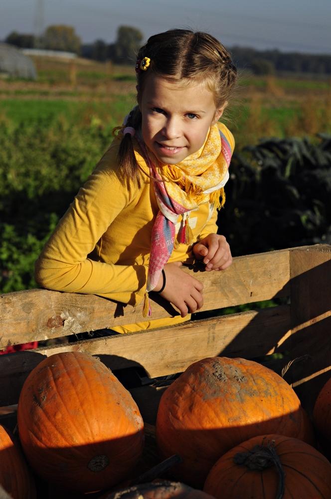 dziewczynka na farmie dyń