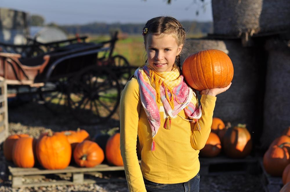 Farma dyń pod Krakowem i jesienny dom