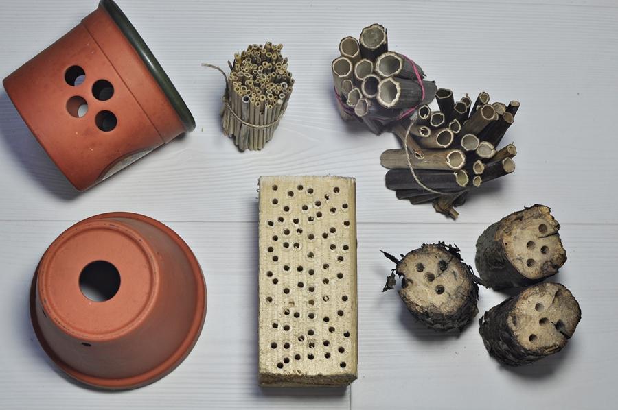 budki dla owadów