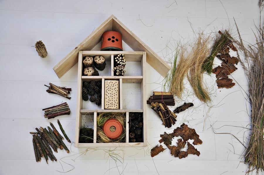 domek dla owadów zrób to sam