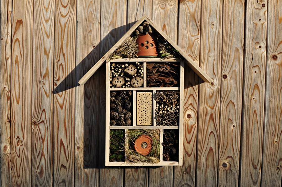 Domek dla owadów – zrób to sam!